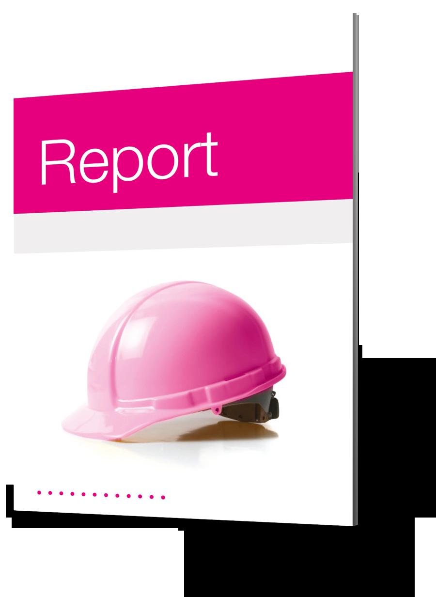 Report 02