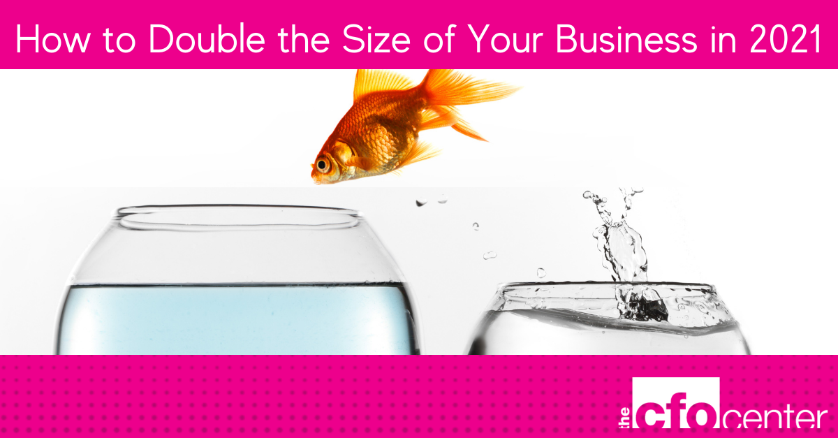 How to Double the Size of Your Business in 2021